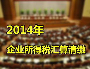 2013税审报告指南